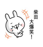 【柴田】専用名前ウサギ(個別スタンプ:14)