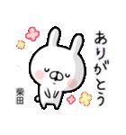 【柴田】専用名前ウサギ(個別スタンプ:23)