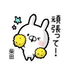 【柴田】専用名前ウサギ(個別スタンプ:34)
