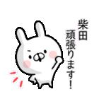 【柴田】専用名前ウサギ(個別スタンプ:35)