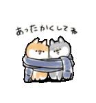 ほんわかしばいぬ<愛と気づかい>(個別スタンプ:01)