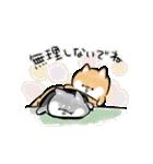 ほんわかしばいぬ<愛と気づかい>(個別スタンプ:03)