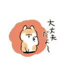 ほんわかしばいぬ<愛と気づかい>(個別スタンプ:05)