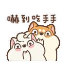 アワ柴犬の日常-クリスマスと新年の特別篇(個別スタンプ:1)