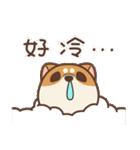 アワ柴犬の日常-クリスマスと新年の特別篇(個別スタンプ:3)