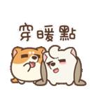 アワ柴犬の日常-クリスマスと新年の特別篇(個別スタンプ:4)