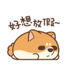 アワ柴犬の日常-クリスマスと新年の特別篇(個別スタンプ:8)