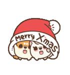 アワ柴犬の日常-クリスマスと新年の特別篇(個別スタンプ:19)