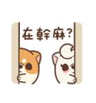 アワ柴犬の日常-クリスマスと新年の特別篇(個別スタンプ:20)