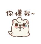 アワ柴犬の日常-クリスマスと新年の特別篇(個別スタンプ:21)