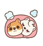 アワ柴犬の日常-クリスマスと新年の特別篇(個別スタンプ:34)