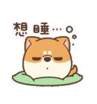 アワ柴犬の日常-クリスマスと新年の特別篇(個別スタンプ:39)