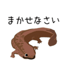 動物たちの使えるスタンプ3(個別スタンプ:04)