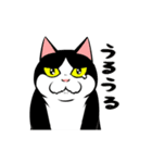 おはぎ(動)5(個別スタンプ:07)