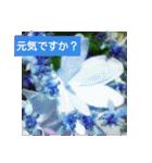 紫陽花と日常の挨拶(個別スタンプ:01)