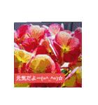 紫陽花と日常の挨拶(個別スタンプ:07)