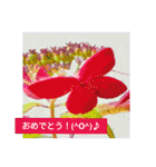 紫陽花と日常の挨拶(個別スタンプ:12)