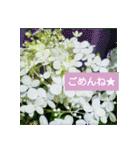 紫陽花と日常の挨拶(個別スタンプ:22)