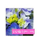 紫陽花と日常の挨拶(個別スタンプ:23)
