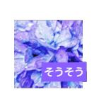 紫陽花と日常の挨拶(個別スタンプ:24)