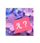 紫陽花と日常の挨拶(個別スタンプ:25)