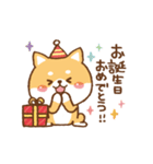 年中使える♥お祝い用かまってチビ柴 その4(個別スタンプ:01)