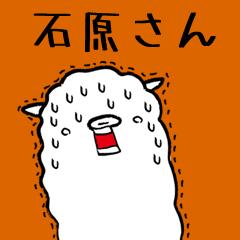 【石原さん専用】脱力系アルパカさん