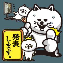 いつも何かを企む白猫-日常よく使う編-
