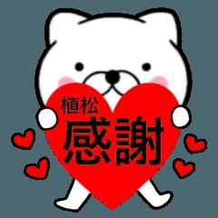 【植松】が使う主婦が作ったデカ文字ネコ