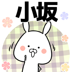 小坂の元気な敬語入り名前スタンプ(40個入)