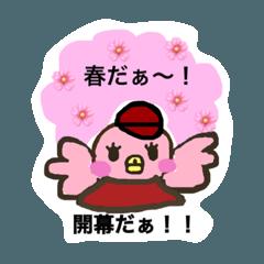 東北のピンク鳥2