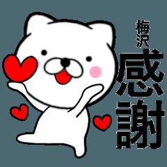 【梅沢】が使う主婦が作ったデカ文字ネコ