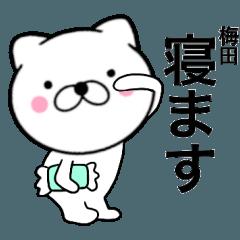 【梅田】が使う主婦が作ったデカ文字ネコ