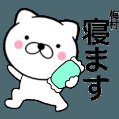 【梅村】が使う主婦が作ったデカ文字ネコ
