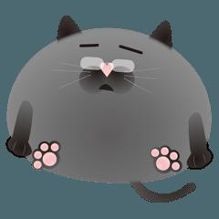 おじさんっぽいグレー猫
