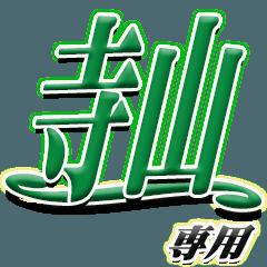 サイン風名字シリーズ【寺山さん】デカ文字