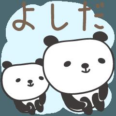 よしださんパンダ panda for Yoshida