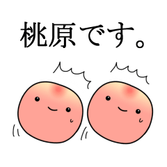 桃原です。