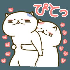 にゃっぷる(めす)2