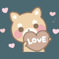 柴犬ラブラブバレンタイン&ホワイトデー
