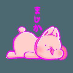 ぶさ可愛いうさぎ犬(完全保存版)