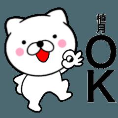 【植月】が使う主婦が作ったデカ文字ネコ