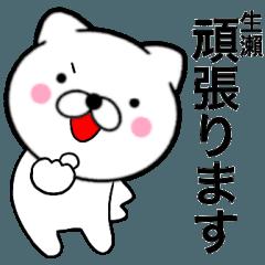 【生瀬】が使う主婦が作ったデカ文字ネコ