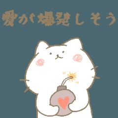 大好き!にゃんこ+α!