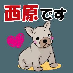 西原さんが使う可愛い子犬の名前スタンプ