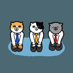 サラリーマン猫✖️3
