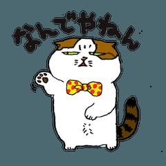 町田尚子の猫スタンプ 白木ピッピ 大阪弁