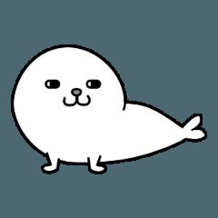 Just Fur Seal x Arctocephalinae