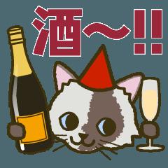 かなりお酒が好きな猫 びいちゃん