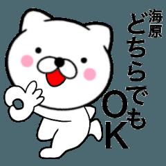 【海原】が使う主婦が作ったデカ文字ネコ